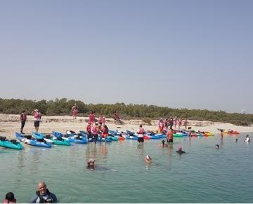 كشركةٍ متخصّصة في الرحلات البحرية بين أشجار المانجروف في سواحل أبو ظبي، تطمح شركة سي هوك للرياضات المائية والمغامرات لتكون الشركة الرائدة في إدخال ثقافة الرياضات البحرية من دون محرّكات لتكون جسراً بين طريقة أجدادنا في العيش وبين نمط حياتنا العصري. كشركةٍ فرعية من هوساك للمغامرات، شركة المغامرات الرائدة في المنطقة، سي هوك هي الشركة الرائدة في تنويع وجهات السياحة البيئية في دول الخليج من خلال حث الشباب على اكتشاف الكثير من العادات الرياضية الجديدة والاهتمام بها.